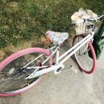 ウチの夫自転車